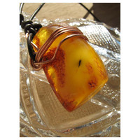 Natural - BALTIC AMBER - Encapsulated Wing