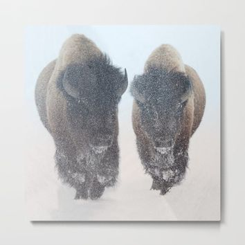 Two Bison In Snow by Lena Owens/OLenaArt