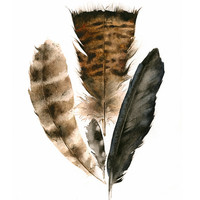 Found Feathers Archival Print, nature, art