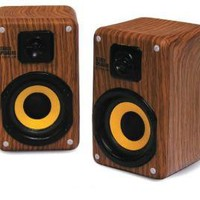 Retro Wood Grain Speakers