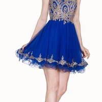 Bateau Neck Royal Blue Embroidered Homecoming Short Dress Tulle