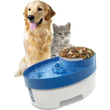 Complete Feeder with water fountain