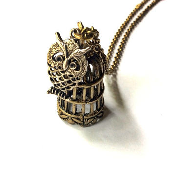 Snowy Owl necklace, owl and bird cage charms
