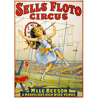 Vintage Circus poster Metal Sign Wall Art 8in x 12in