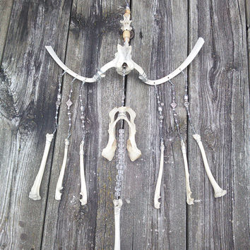 Bone wind chime, Bone Sculpture, Bone Dreamcatcher,Wiccan Pagan Alter,Real Animal Bone Art, Taxidermy Oddities,Halloween Decorations Unique
