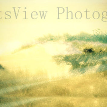 Color photo, nature photography , landscape photography ,Beach art ,sand , summer day,painting effect , digital art, photo art , note card