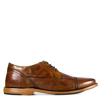 Sutro Larkin II Men's Oxford in Honey
