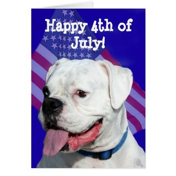 Happy 4th of July white boxer greeting card