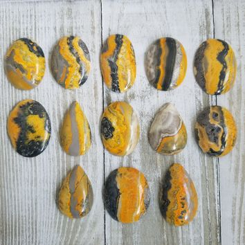 Bumble Bee Jasper Cabochons Pick exact one