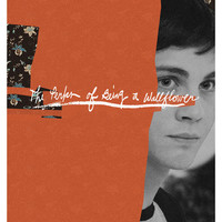 The Perks of Being a Wallflower 24x36 inch poster
