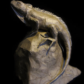 Paper Mache Iguana, Cardboard Animal, Lizard Sculpture, OOAK Unique Handmade Sculpture, Reclaimed Materials, Faux Taxidermy