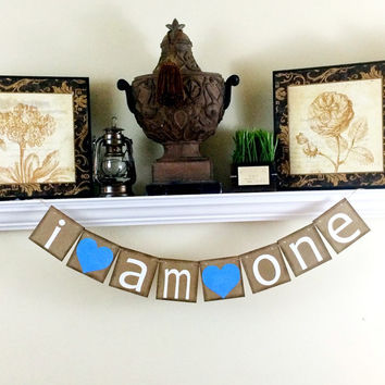 I am one banner, 1st birthday party decoration, I am one photo prop, I am one highchair banner