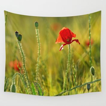 Poppy Wall Tapestry by Guido Montañés