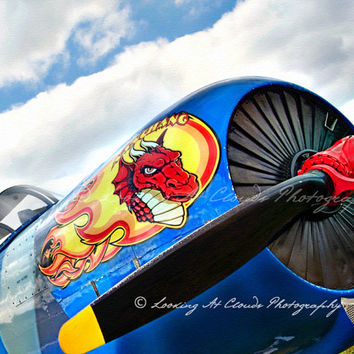 Nanchang nose art, aviation photo, pop art, airplane fuselage and prop, dragon, pilot gift