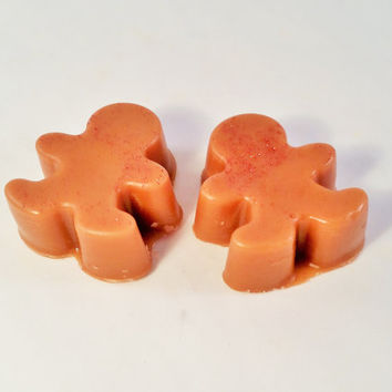 Gingerbread Cookies Highly Scented Wax Melts (2 pack) - Wax Tarts - Home Fragrance - Wax Cubes - Candle Melt - Christmas Winter Scent