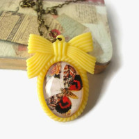 Brown red butterfly oval glass pendant necklace. resin yellow ribbon frame. insect jewelry. antique print
