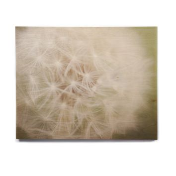 "Catherine McDonald ""Dandelion"" Birchwood Wall Art"