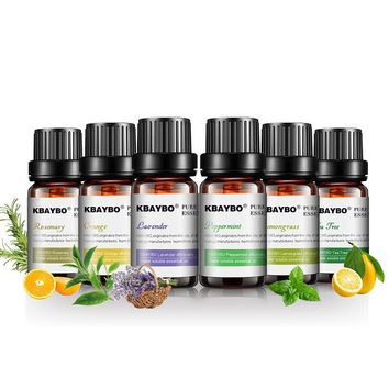 Aromatherapy Essential Oils (6 Fragrance Set)
