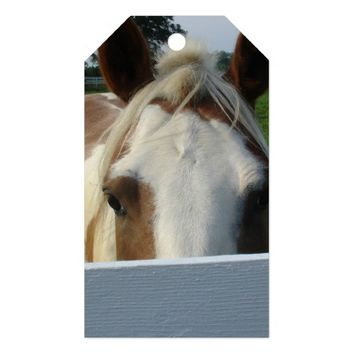 Peek a Boo Palomino Horse Behind Fence Gift Tags