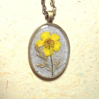 Real Pressed Flower Buttercup Wildflower Bronze Pendant Necklace