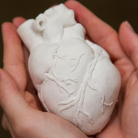 SALE  Anatomically Correct Hand Made Ceramic Heart by WeaselWrks