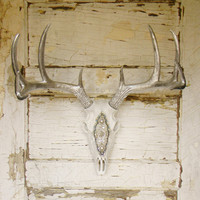 Deer Skull with Antlers,Faux Deer Skull,Faux Deer Head,Faux Taxidermy,Faux Antlers,Boho Decor,Deer Skull Antlers,Cabin Decor,Skull Decor