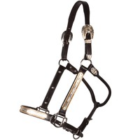 Raleigh Gold Touch Show Halter with Lead in QH Show Halters