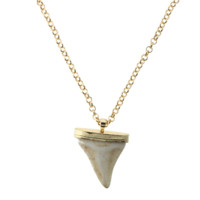 Gold Lions Tooth Pendant Necklace