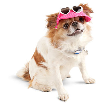 Smoochie Pooch Pink Sunglasses Visor Dog Hat