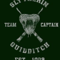 Slytherin Quidditch Team Captain - Dumbledore's Army Role-Play Wiki