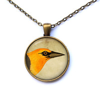 Animal necklace Orange Jay pendant Bird jewelry CWAO44