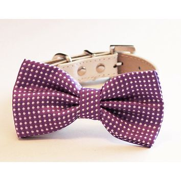 Purple Polka dots Dog Bow tie collar, polka dots wedding, purple wedding collar