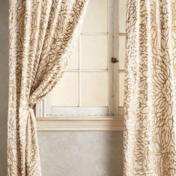Petalwood Curtain by Anthropologie
