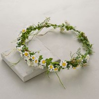 Paperwhites Floral Crown by Anthropologie Green One Size Accessories