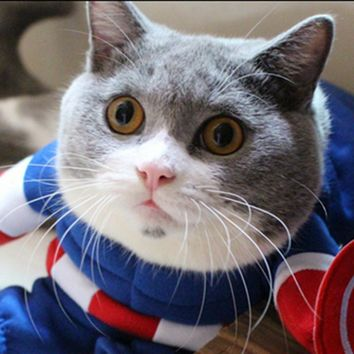 Marvel's The Avengers! Pet Winter Warm Jacket,Cat Costume Captain America Muscle Model