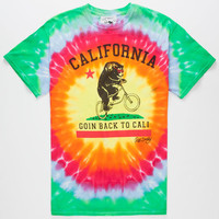 Riot Society Tie Dye Cali Bike Mens T-Shirt Multi  In Sizes