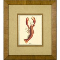 Phoenix Galleries Lobster Framed Print - HP720