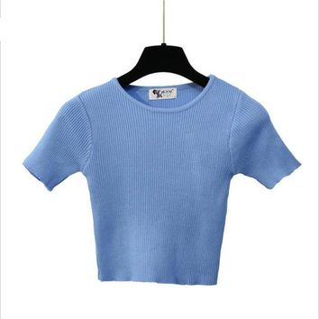 Elastic Slim Fit Knitted Crop Top Shirt