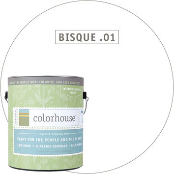 Paint by Colorhouse BISQUE .01