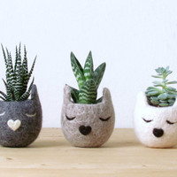 Felt succulent planter  / Kitty cat vase / Natural colors / Kawaii gift / cat lover gift /set of three - Choose your color!