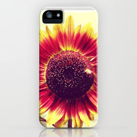 Sunflower Vintage Red iPhone & iPod Case by Sweet Harmony Photography