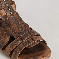 Claire Teak Gladiators