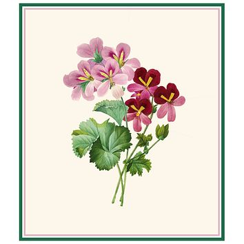 Cranesbill Geranium Flower Inspired by Pierre-Joseph Redoute Counted Cross Stitch Pattern