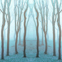 Woodland Photo, Tree Print, Fairytale decor, Woodland Art, Dreamy Photo, Wall Art / Blue Wood