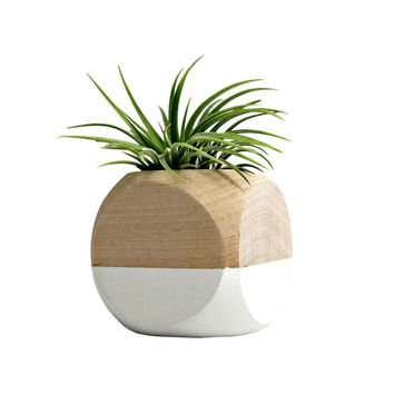 Cube Planter in White