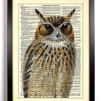 Upclose Owl, Vintage Illustration, Eco Friendly Home, Kitchen, Bathroom, Nursery Decor, Dictionary Book Print Buy 2 Get 1 FREE