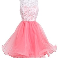 Fashion Plaza Princess Graduation Party Homecoming Dress D0250