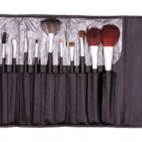Amazon.com: Makeup Brush Kit for All Types of Makeup Application, Professional Quality, Great Value, All Size Brushes with Case, Makeup Brush Set, Blush Brush, Eyeshadow Brush, Different Size Cosmetic Brushes.: Beauty