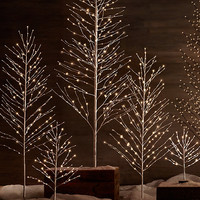 Starlit Tree - Snow
