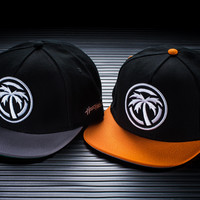 ICON SnapBack hat FALL Collection